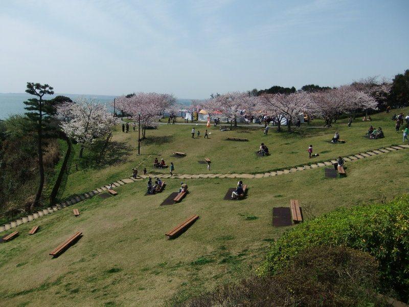 遊んでいる子供や桜の木の下でのんびりしているカップルなど、多くの人で賑わっていました。