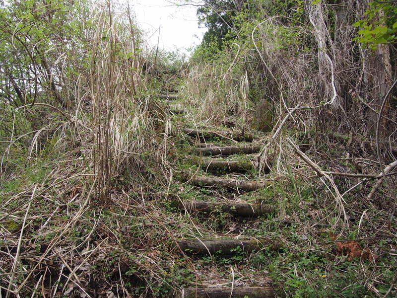 登山道前半の上り階段