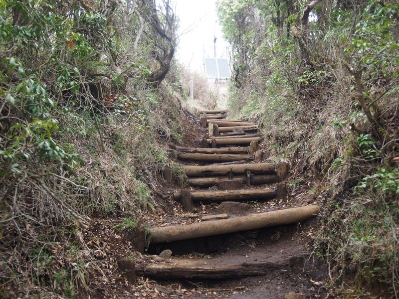 ここを登ると頂上に到着する階段