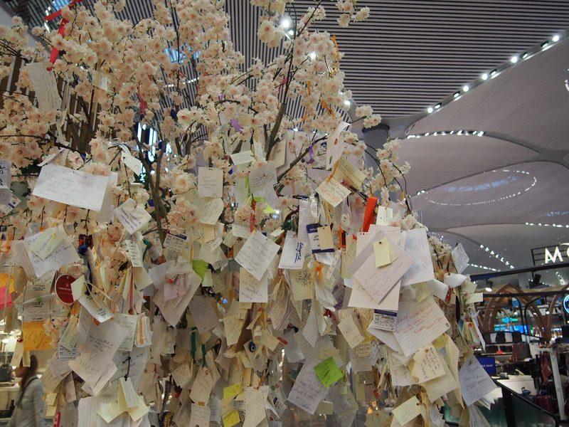 いろいろな言語で文字が書かれた大量の短冊が桜の枝にかかっていました。